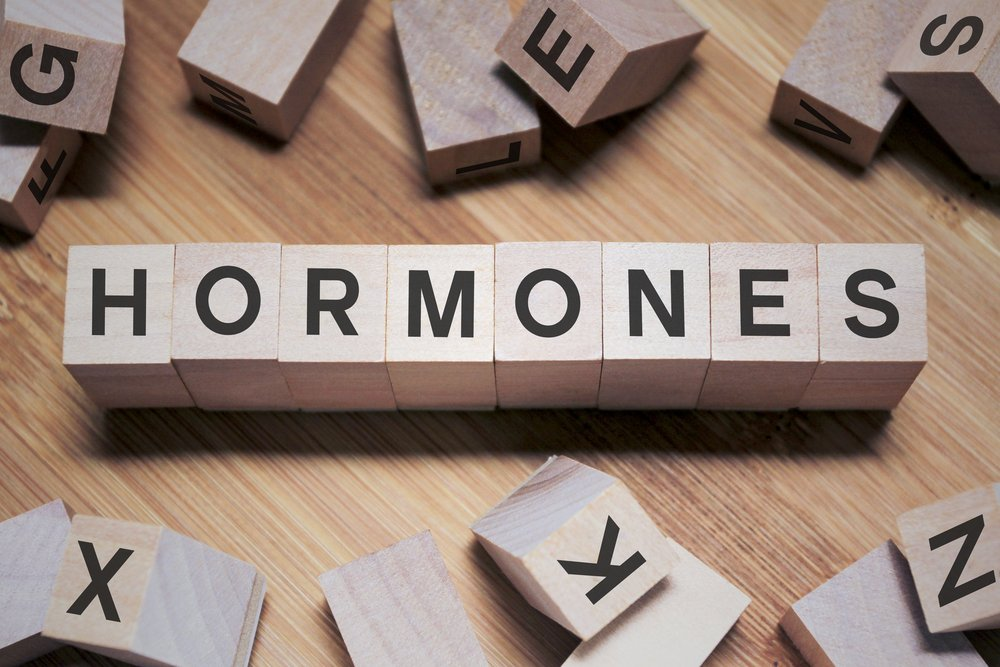 Hormones and Weight Gain: Cortisol, Leptin, and Ghrelin